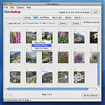FlickrBackup Photo Options